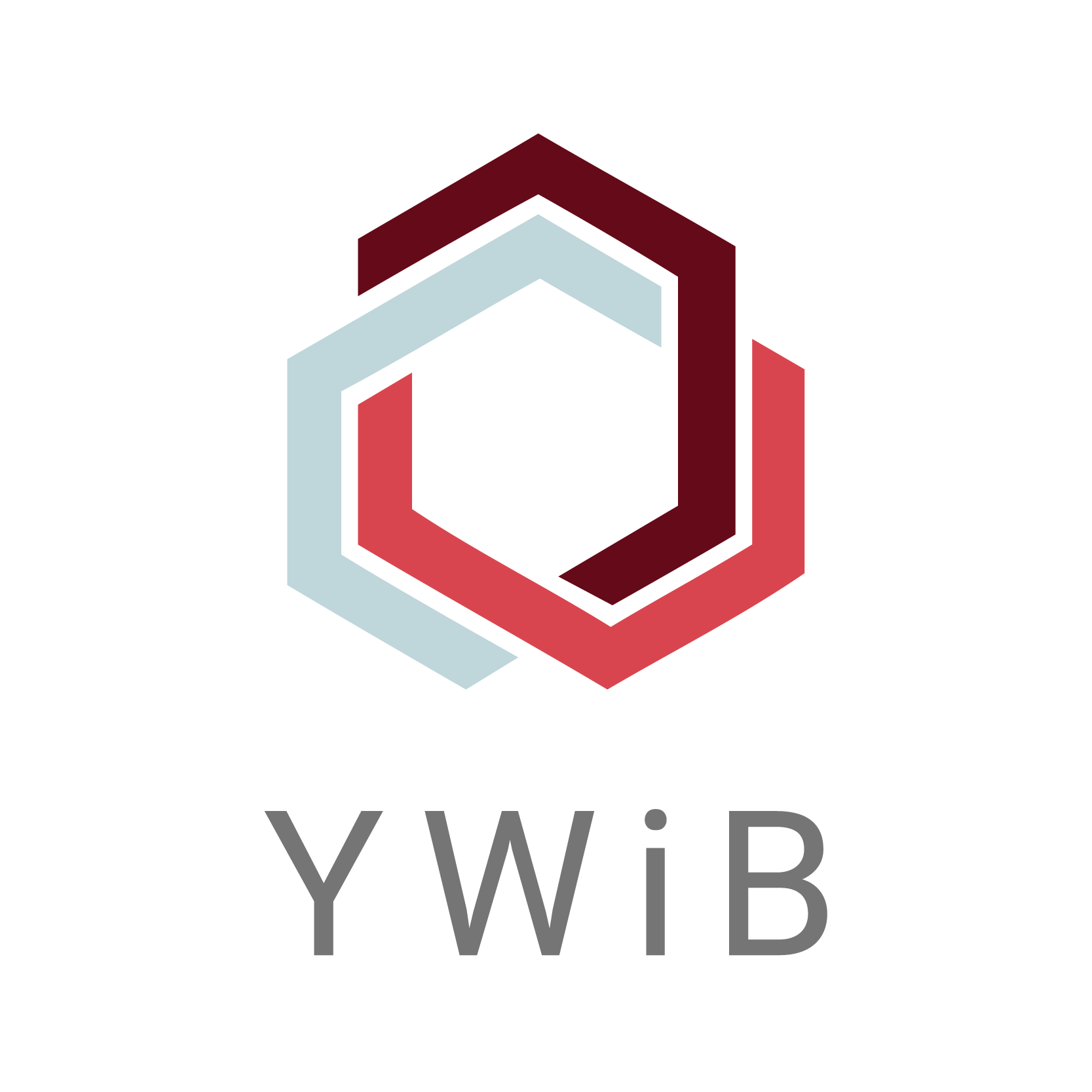 YWiB Logo